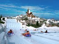 1  Bahamas Cruise  Disneys Water Parks