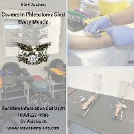 Hands-On Phlebotomy Course Starting Now 4-weeks