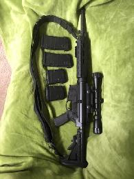 1 200  Bushmaster 308 Win762 51 NATO AR-10 with  Geisselle trigger
